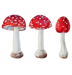 Watercolor amanita mushrooms vector image