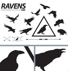 Hand Drawn Ravens Set vector image vector image