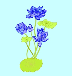 background of Beautiful hand drawn lotus flowers a vector image