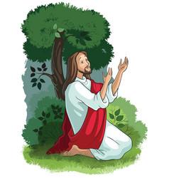 jesus agony in garden vector image