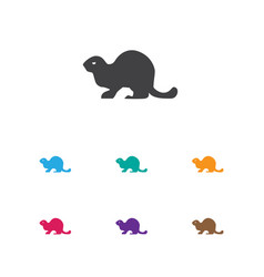 Of zoo symbol on beaver icon vector