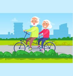 senior couple riding double bicycle image vector image