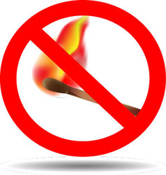 Sign of the fire ban vector image