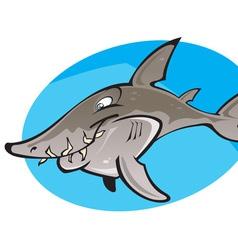 Cartoon Grey nurse shark vector image