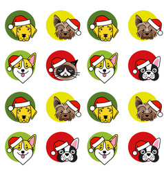 dogs and cat in christmas santa hat vector image