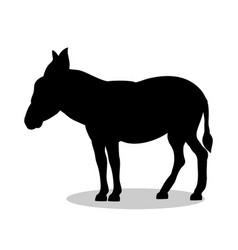 Donkey farm mammal black silhouette animal vector