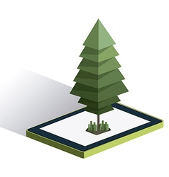 Isometric Tree design vector image