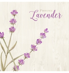 Laveder over wooden panels vector