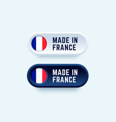 made in france sign in two color styles vector image