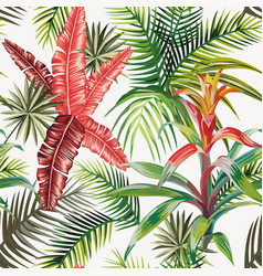 pink palm leaves bromelia light background vector image