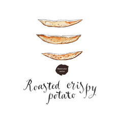 roasted crispy potato vector image