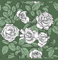 seamless pattern from white roses on green vector image