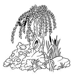 Willow and shrubs vector