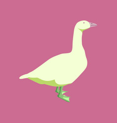 in flat style goose vector image