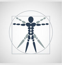 anatomy logo icon design vector image