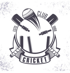 Cricket amater club vector