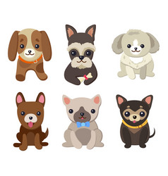 dogs and puppies set poster vector image