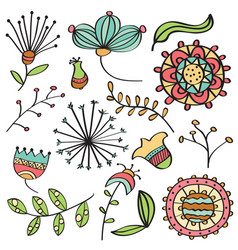 doodle color flowers and leafs collection vector image