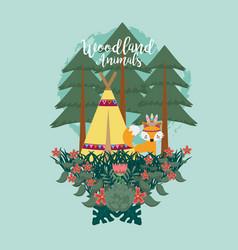 fox woodland animals woodland animals vector image