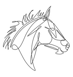 Horse continuous line vector