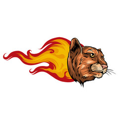 jaguar flame tattoo design art vector image