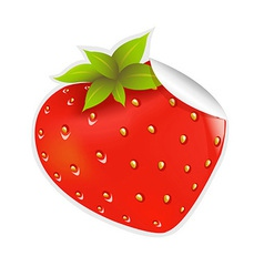 Label Strawberry vector