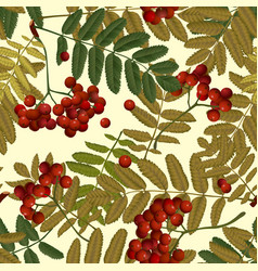 seamless pattern background red rowan vector image