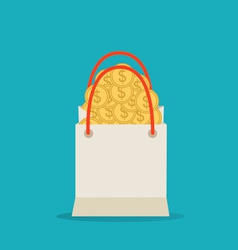 Money in the bag vector image