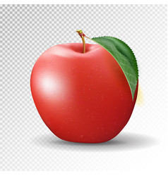 red apple on transparent background 3d vector image vector image