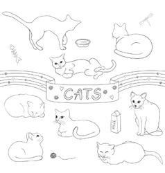 Contour cats set vector image