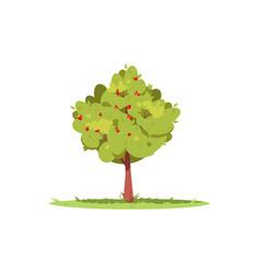 Apple tree semi flat rgb color vector
