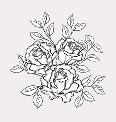 black and white rose flowers and leaves hand vector image