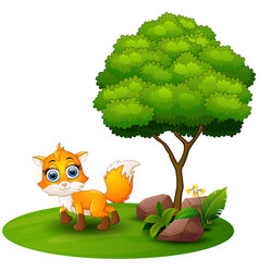 cartoon fox under a tree on a white background vector image