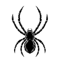 dangerous spider in vintage monochrome style vector image