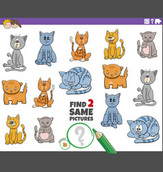 Find two same cat characters game for children vector