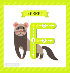 Letter f uppercase tracing standing ferret vector