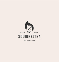 squirrel tea cup leaf logo icon mascot character vector image