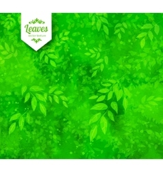 Green spring and summer background vector