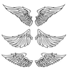 vintage wings isolated on white background vector image vector image