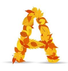 Autumn leaves font letter A vector