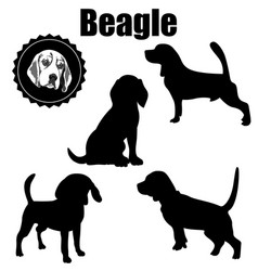 beagle dog silhouettevarious operation vector image