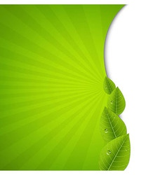 Green Burst Poster With Leaves vector image