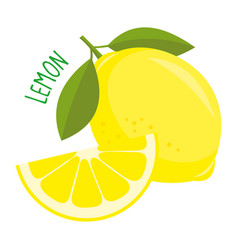 lemon isolated vector image