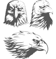 Silhouette eagle head falcon front sideview set vector