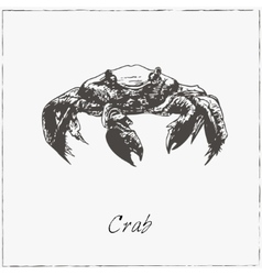 Crab Hand drawn sketch Collection of seafood vector image