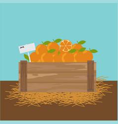 Orange in a wooden crate vector