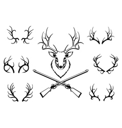 Set antlers with a trophy and guns vector