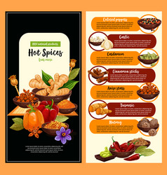 Spice shop banner with condiment and seasoning vector