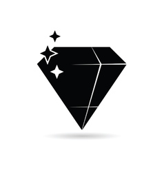 diamond expensive black vector image vector image