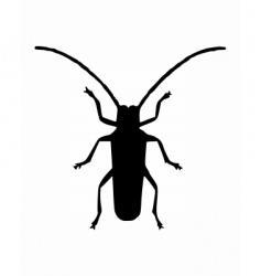 long horn beetle vector image vector image
